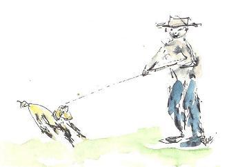 jonge hond 001 - kopieklein