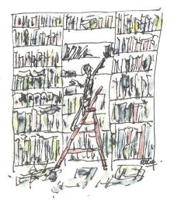 boekenkast 001 - kopieklein
