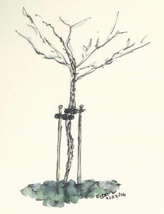 Appelboomkopieklein