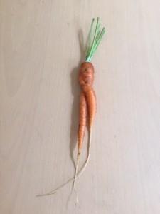 IMG_1810 worteltje in ruste kopieklein