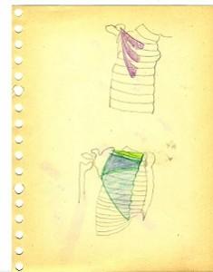schouder anatomie 2 kopieklein