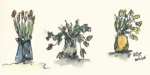 tulpen kopieklein